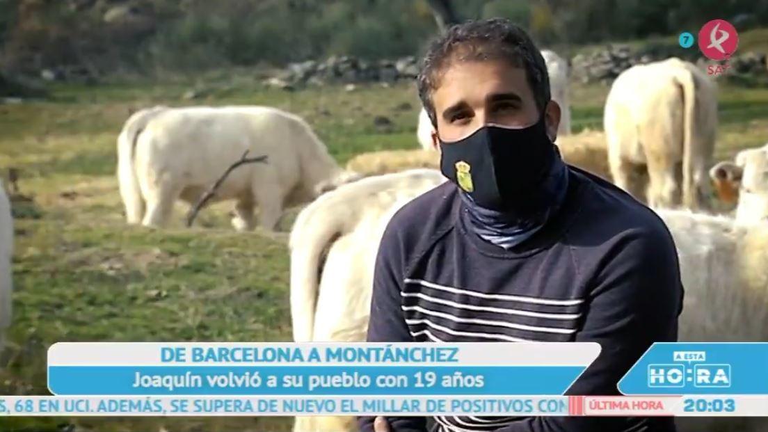 De Barcelona a Montánchez para convertirse en ganadero