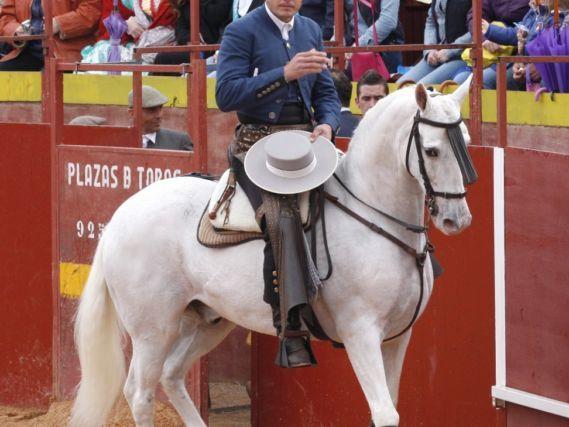 Talayuela anuncia el primer festejo de rejones en Extremadura