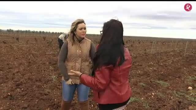 Ayuda a jóvenes agricultores (28/03/17)