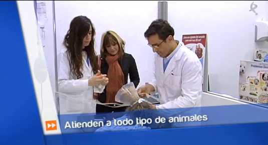 emprender con animales (19/01/15)