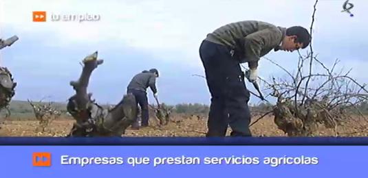 emprender en agricultura (01/02/13)
