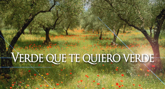 Embalse de Orellana (09/05/16)
