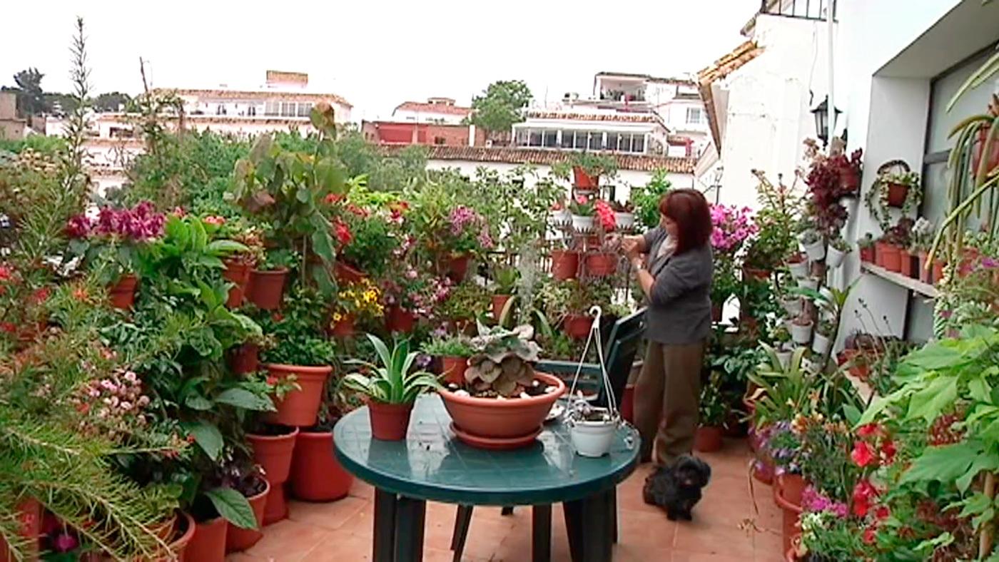 Temporada 6 Programa 251 Casas Con Terraza Callejeros