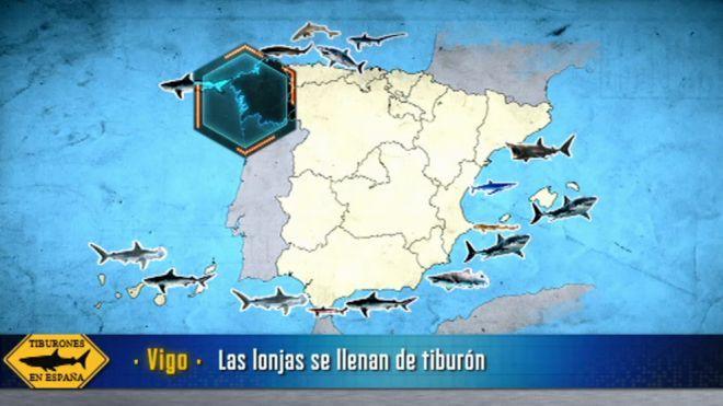 Temporada 10 Programa 412 - Tiburones en España | Cuarto Milenio ...