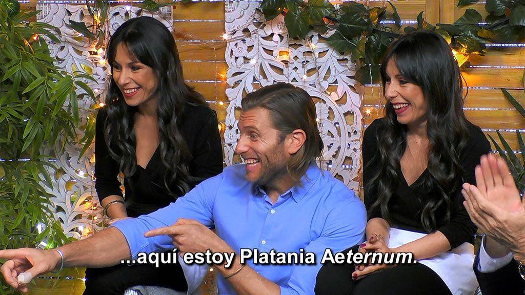 Top Vídeos La felicitación y el nuevo look de Platania Aeternum dejan boquiabiertos al equipo - Top Vídeos 15/04/2021