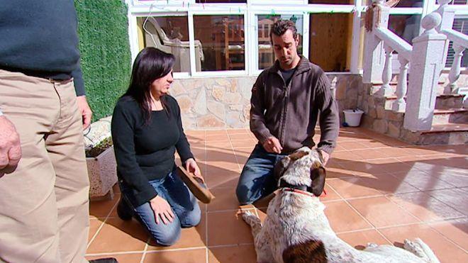 Temporada 1 Programa 6 - Turco, el perro bombero