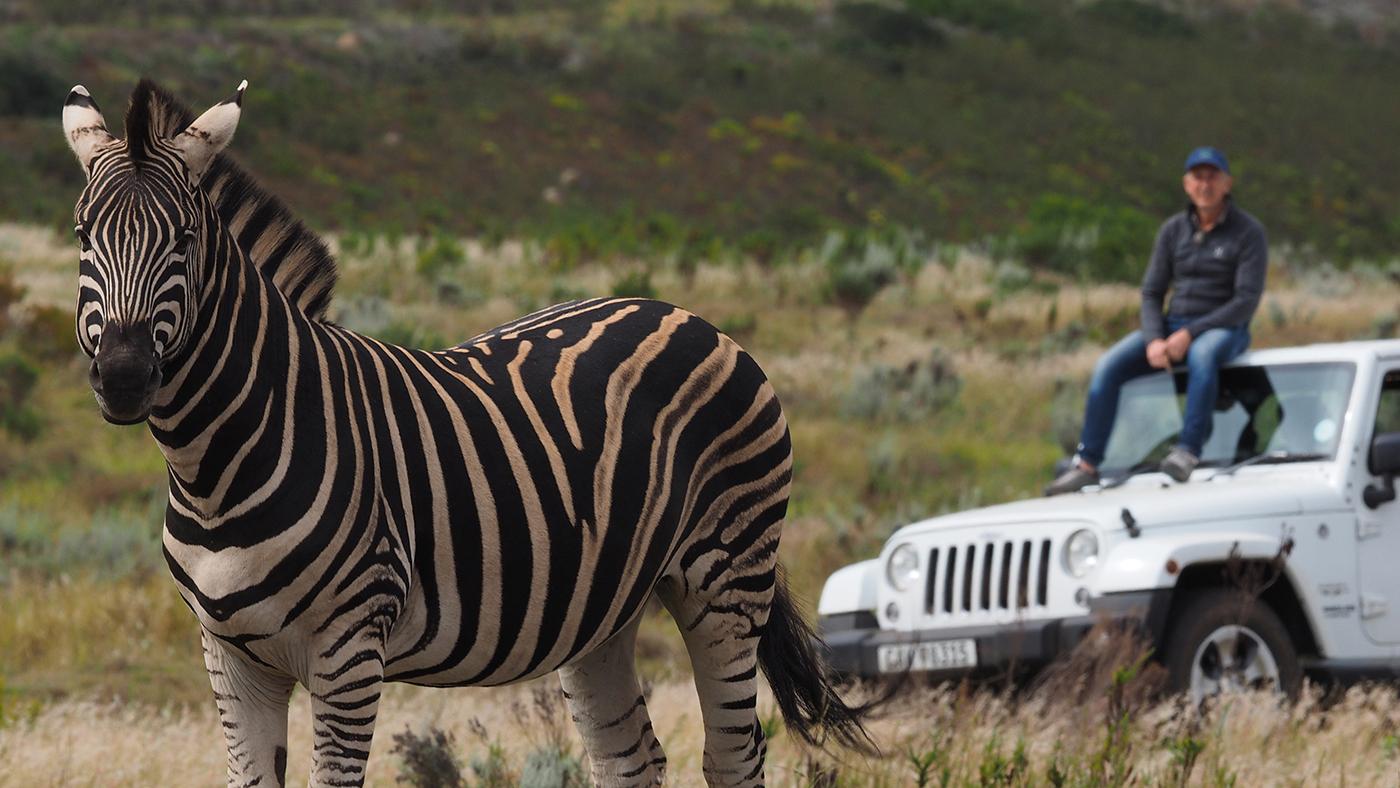 Gondwana Programa 1 - El gran trabajo tras una reserva de animales