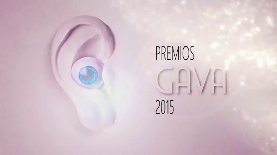 Gala de entrega de los premios GAVA 2015 (Viernes, 27-11-2015)
