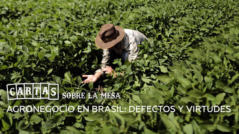 2018-10-09 - Agronegocio en Brasil: defectos y virtudes