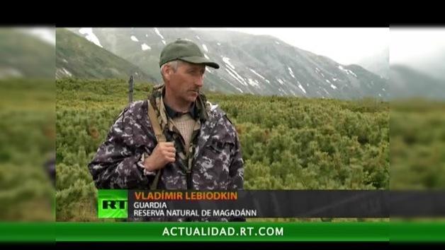 2012-04-30 - Reserva natural de Magadán: por tierra y por mar