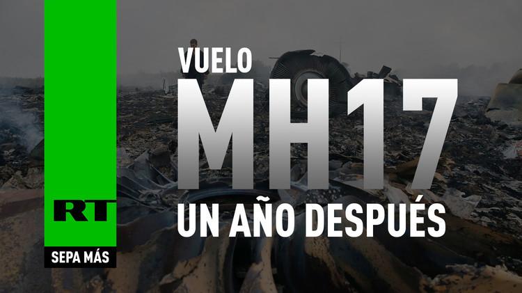 2015-07-17 - Vuelo MH17: un año después
