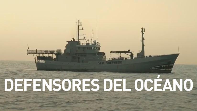 2017-10-18 - Defensores del océano
