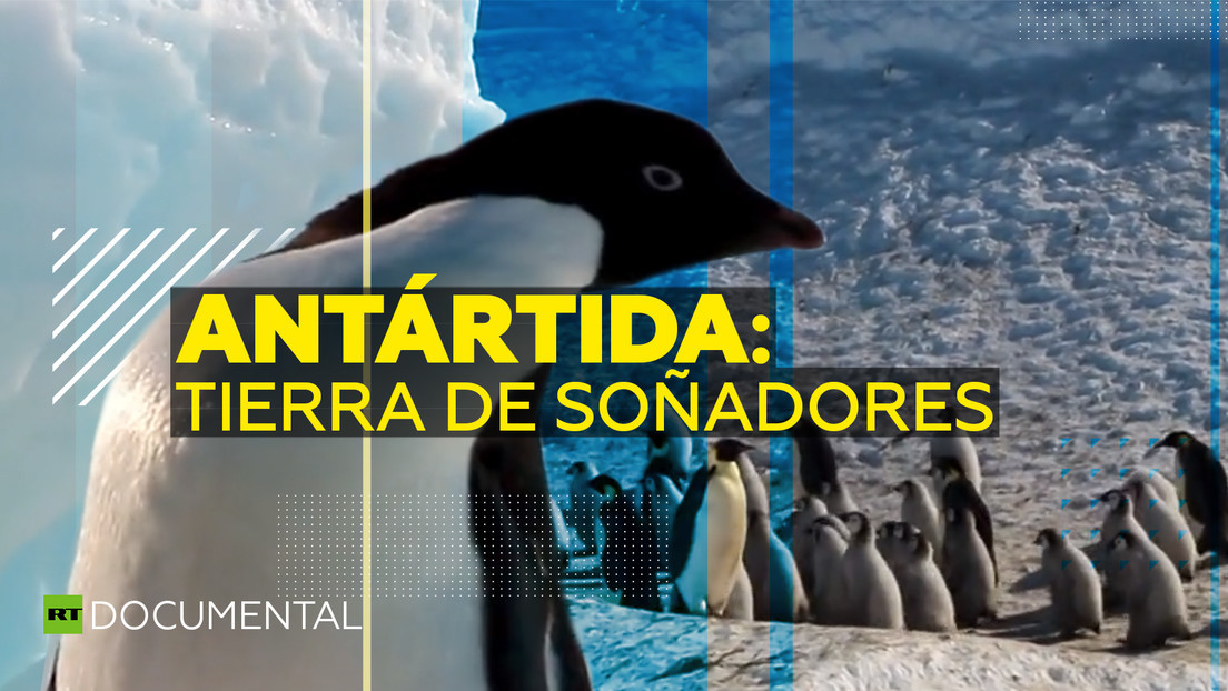 2020-09-11 - Antártida: tierra de soñadores