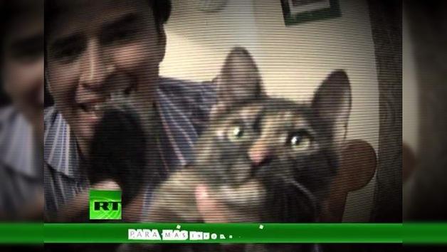 2011-07-23 - La lista de Erick: ¿Alguien habla felino? (E11)