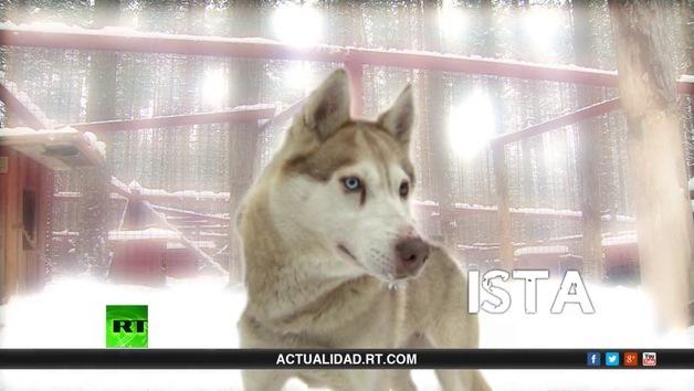 2014-03-21 - La lista de Erick: Un frío de perros