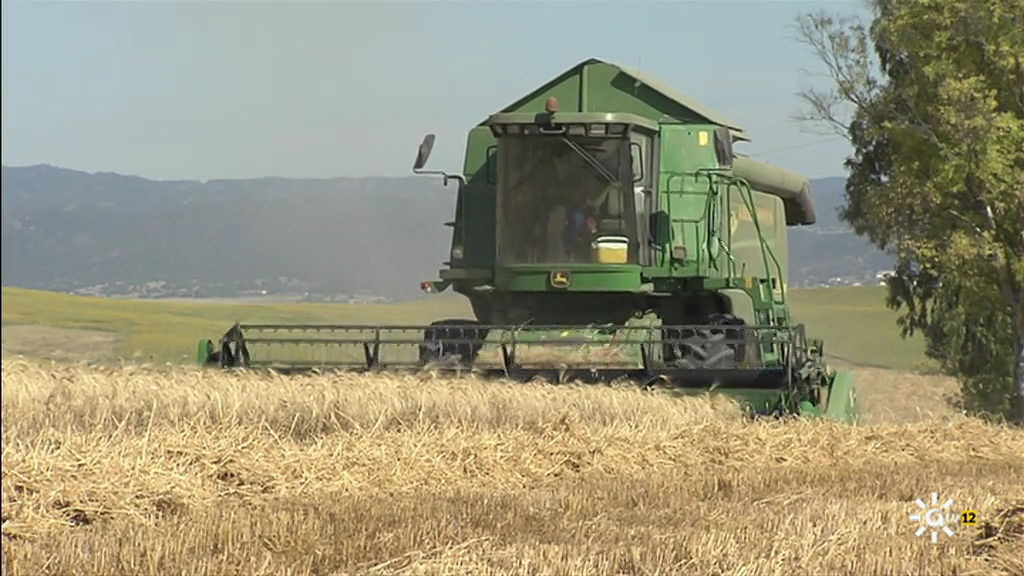 Los cambios del paisaje agrario (23/05/2021)