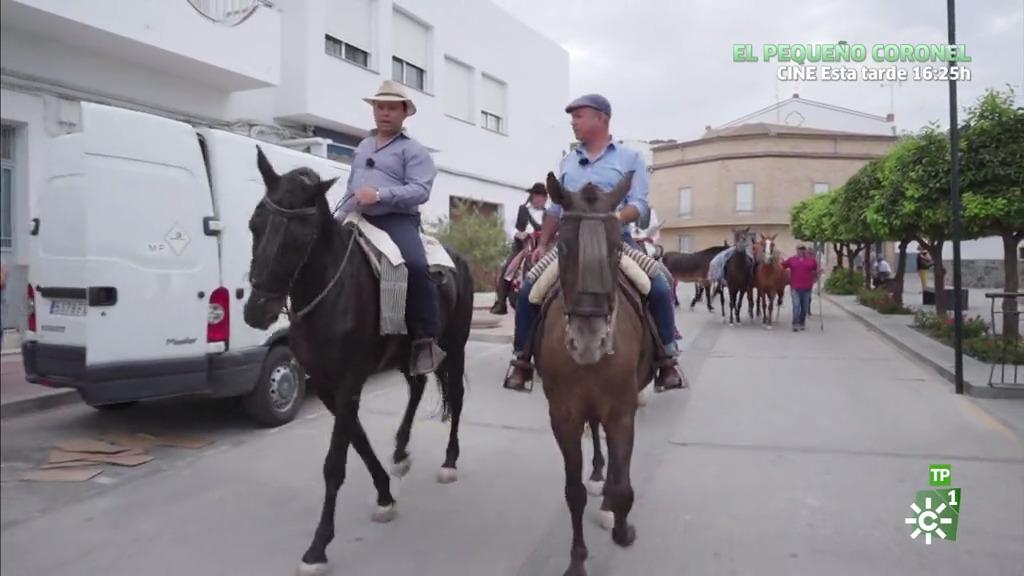 De Pruna a Ronda a caballo (21/09/2019)