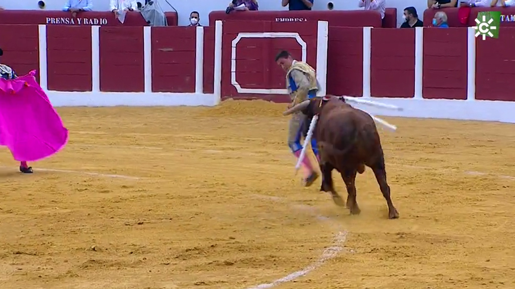 Novillada desde Antequera (19/09/2020)