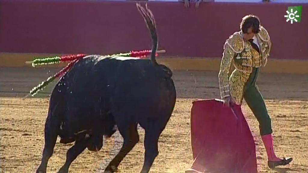 Toros desde Niebla (Huelva) (18/10/2020)