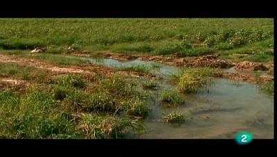 Agua - El curso del río