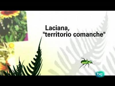 Laciana: territorio comanche