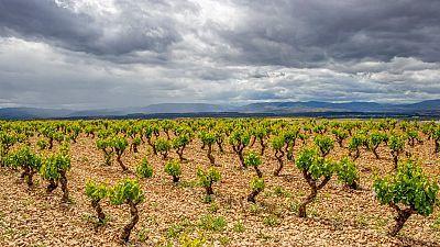 Cielos despejados salvo en el Cantábrico oriental y norte de Navarra