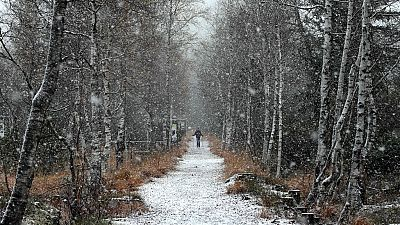 Once comunidades están en alerta por viento, olas, lluvia o nieve