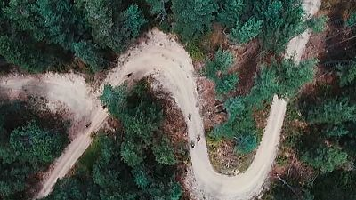 T6  - Gran Fondo Andorra MTB