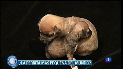 Más Gente - 30/03/12