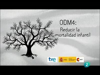 Objetivo 4: reducir la mortalidad infantil (Mozambique)