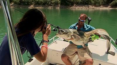 Pesca del siluro en Mequinenza