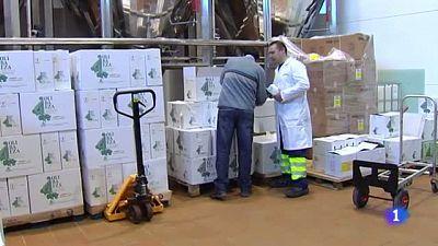 Fin al conflicto del sector del aceite en Jaén