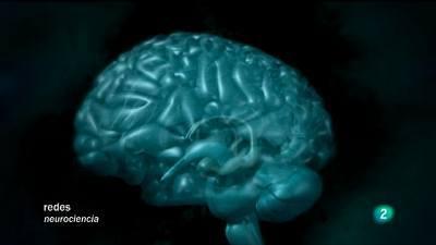 Antes y después de conocer el cerebro