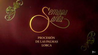 Procesión de Las Palmas de Lorca