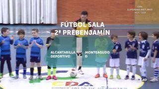 27/02/2016 Alcantarilla Deportivo - Monteagudo D