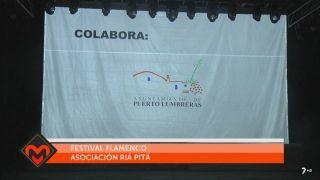 13/07/2017 Festival de flamenco, asociación