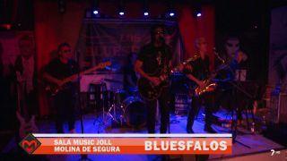 14/12/2018 Concierto Los Bluesfalos