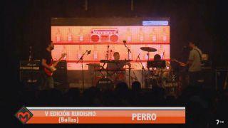 18/01/2019 Concierto Perro
