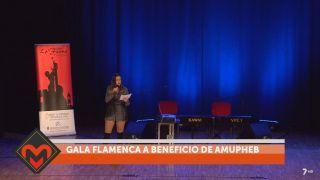 29/07/2018 Gala flamenca a beneficio de AMUPHEB