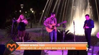 29/11/2016 Street Wings Trío