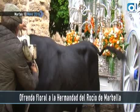 Temporada 2 Número 643 / 10/05/2016 Ofrenda floral Hermandad del Rocío