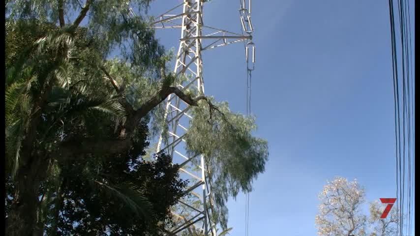 Temporada 5 Número 416 / 02/04/2019 IU Cables Alta Tensión Colegio Al-Andalus