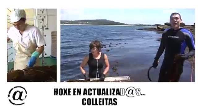 """Capítulo 48: """"Colleitas"""" - 30/10/2011 23:00"""