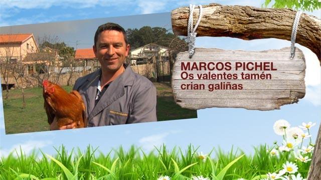 As galiñas de Marcos, o laboratorio veterinario de Ismael e os cabalos de Chus - 20/02/2013 00:00