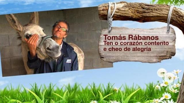 O chícharo bágoa / Coñecemos ás ovellas de Nieves / Tomás e o seu burro intelixente - 10/04/2013 22:45