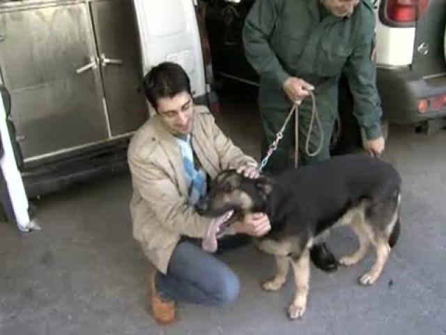 Cap. 17: Eric, un can antidrogas - 27/06/2007 21:40