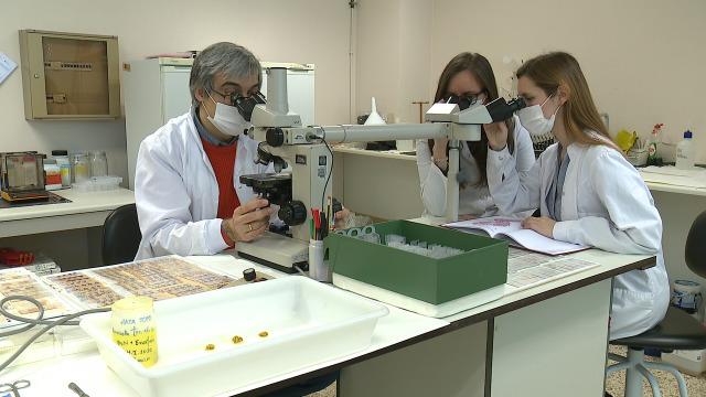 Investigación fronte a praga da rata toupa / Arnigal cultivos - 10/04/2021 13:45