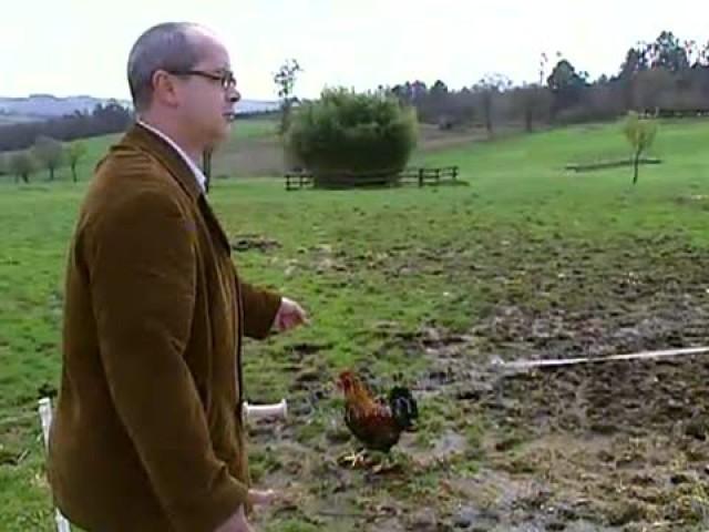 Cap. 4: O polo e o capón sempre están en sazón - 23/07/2008 22:00