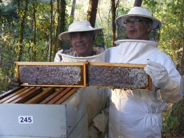 Cap. 44: Queremos mel! - 11/02/2011 22:35