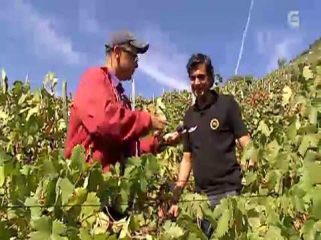 Cap. 98: Coello e sopa con uvas, na Ribeira Sacra - 16/11/2011 22:30